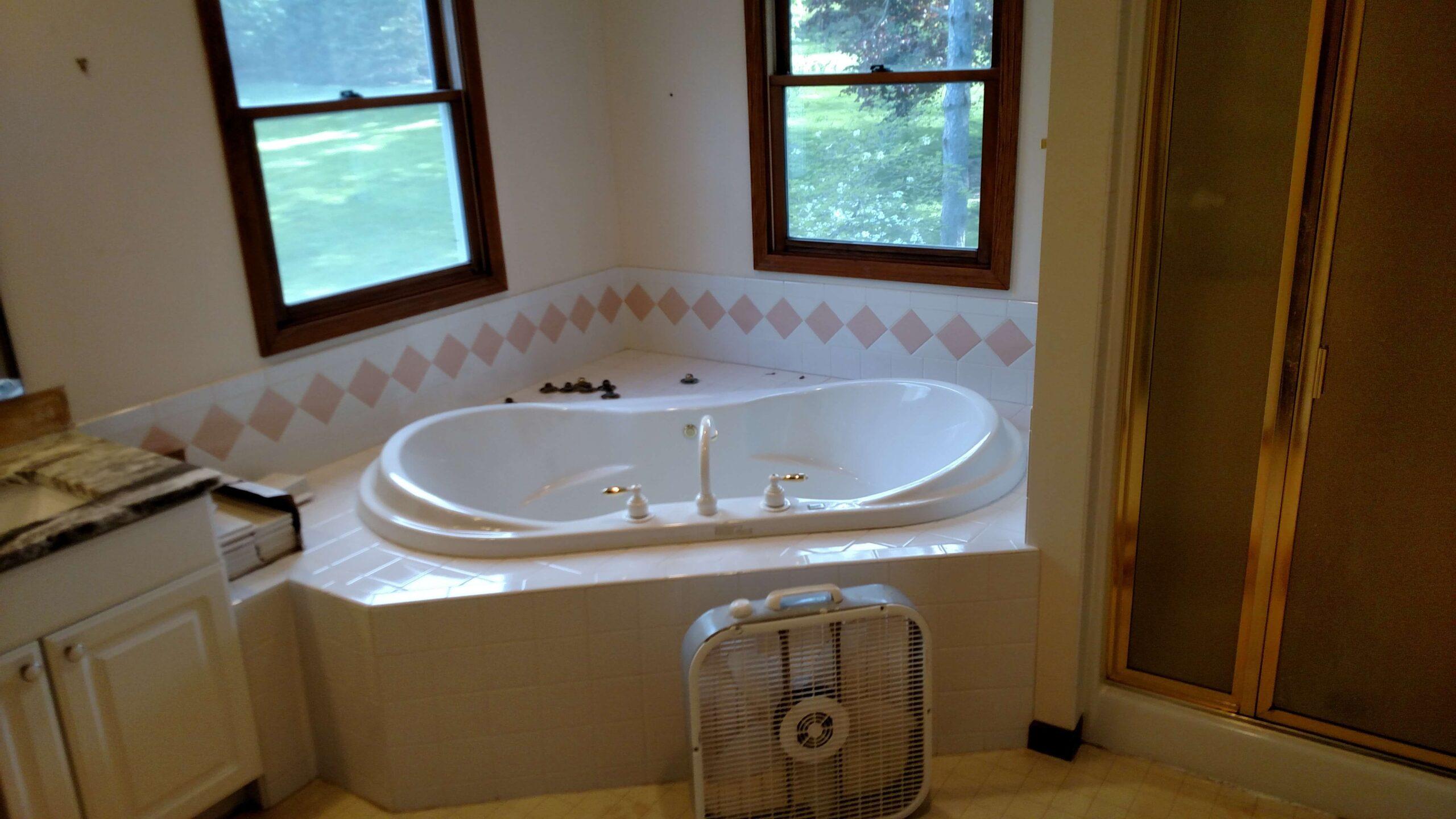 bathroom_caledonia before #2